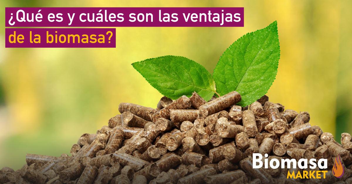 ¿Qué es y cuáles son las ventajas de la biomasa?