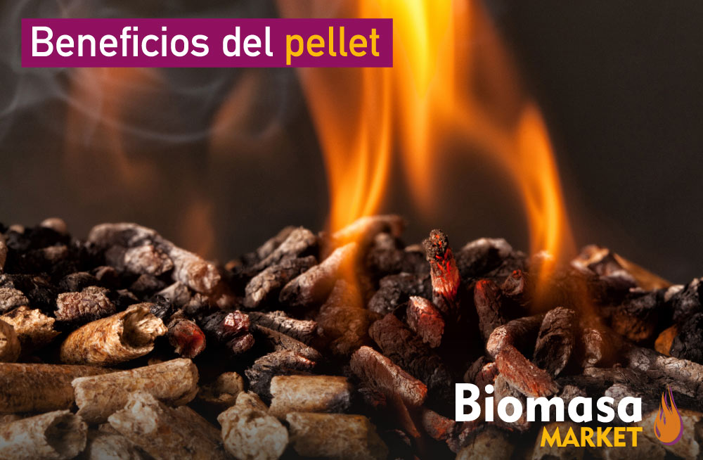 ¿Qué es y cuáles son los beneficios del pellet?
